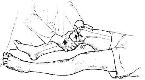 ginocchio13